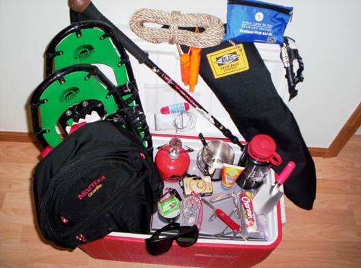 accessories to bring when snowshoeing