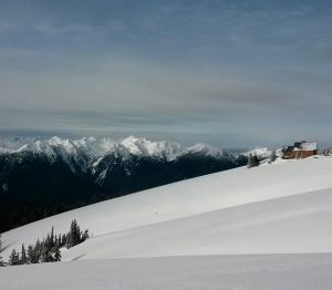 Courtesy of Hurricane Ridge