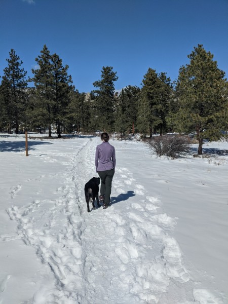 Women and dog walking trail in winter