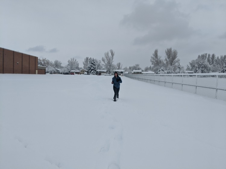 snowshoeing tips near home: person snowshoeing in park after a snowstorm