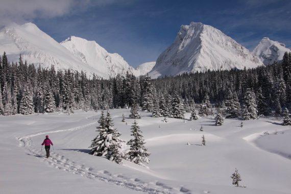 Chester Trail, Alberta