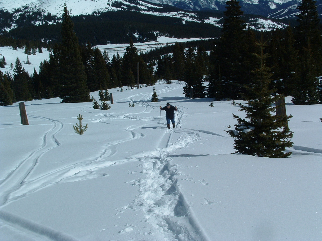 snowshoer with poles far off in the distance