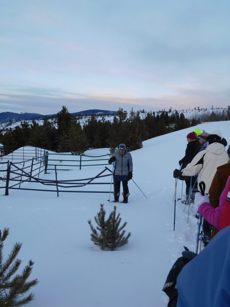 guide pointing out snowshoe hare tracks on tour at Frisco Adventure Park