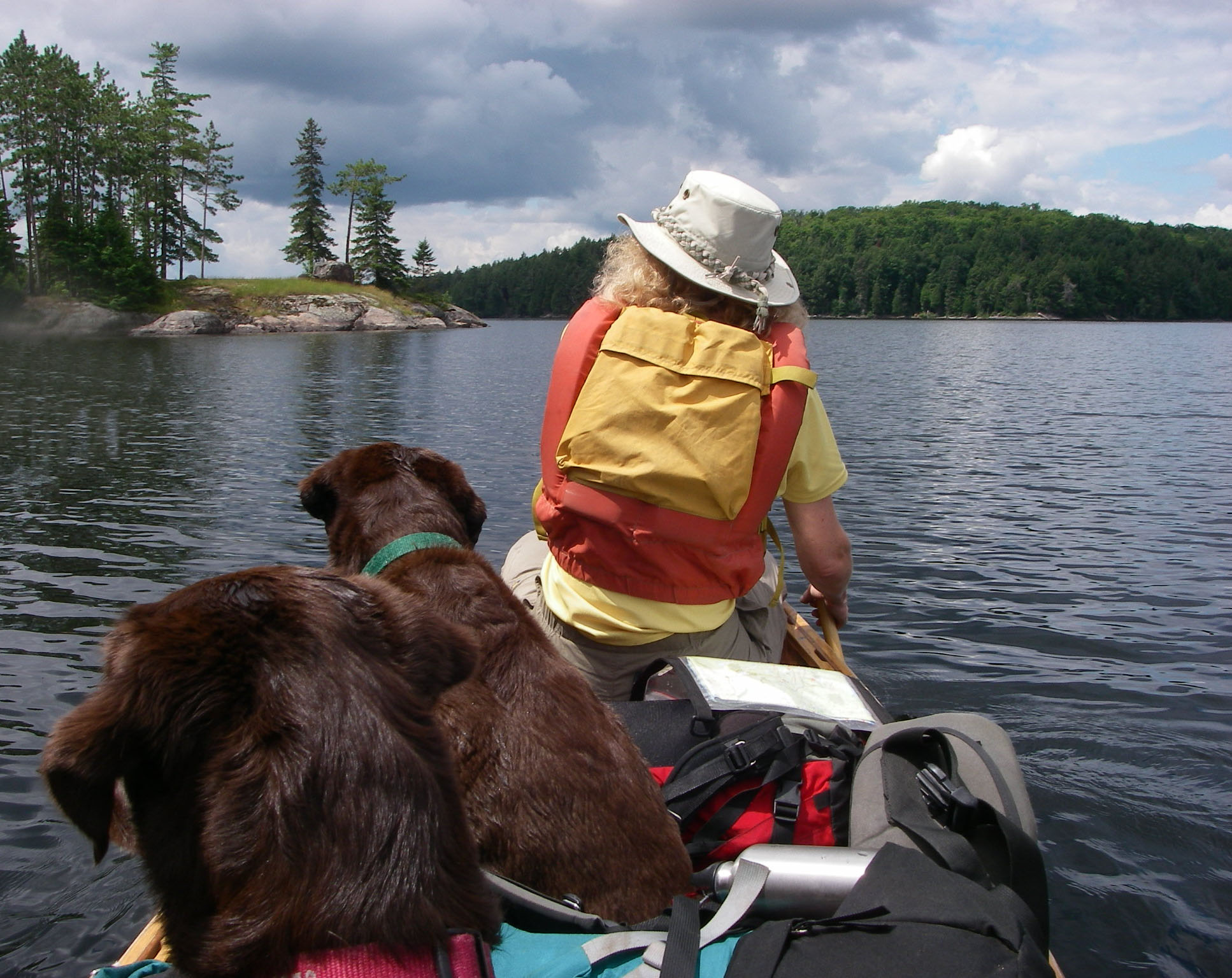 dogs and woman paddling on the water