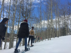 Snowshoe hike to the historic Rowley Homestead.