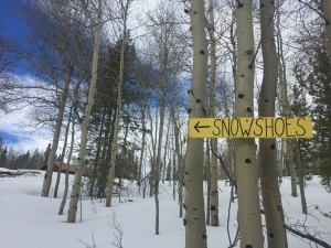 Well-marked snowshoe trails lead the way.