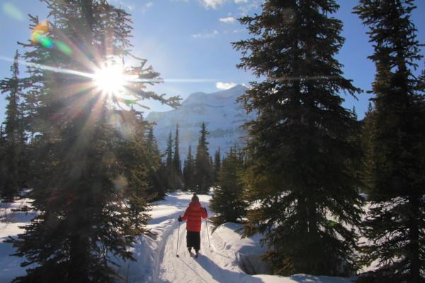 Afternoon skiing around Shadow Lake Lodge