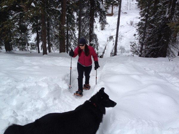 MCH Snowshoe with Dog