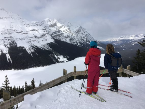 Peyto Lake- Icefields Parkway, AB