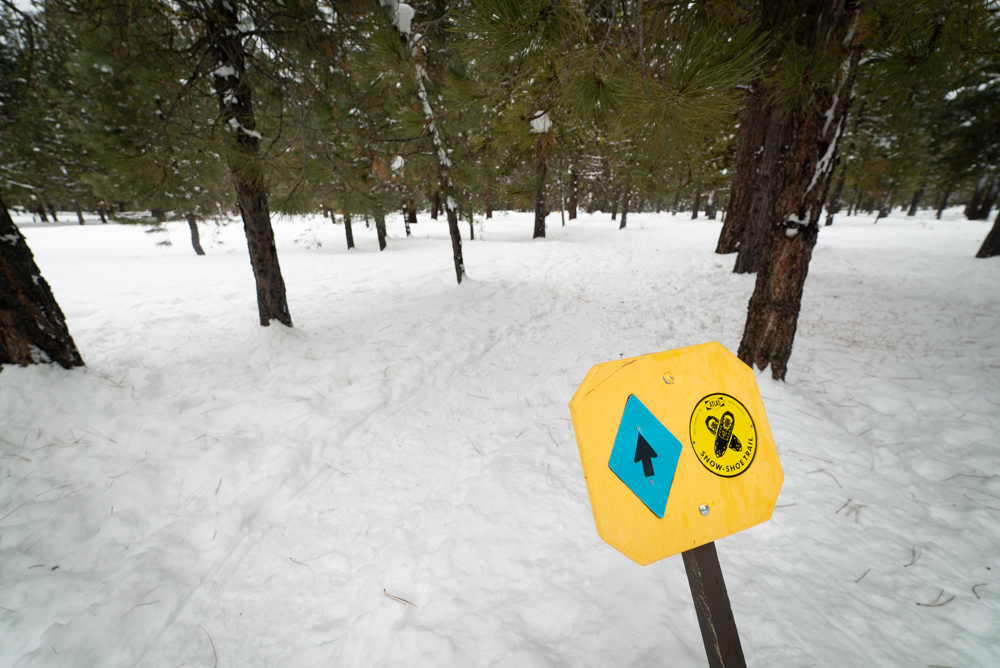 trail sign in McCall Idaho
