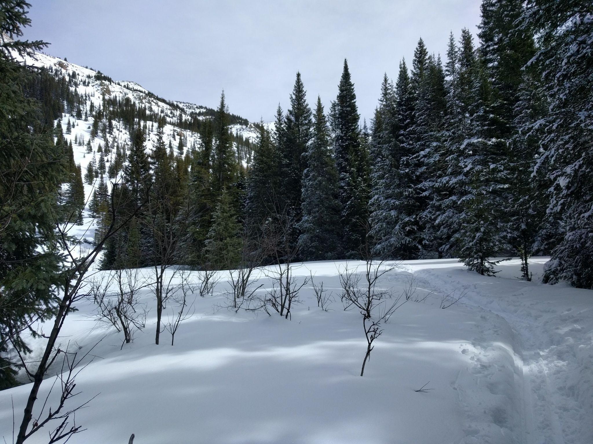 Jim Creek Trail, Grand County, CO