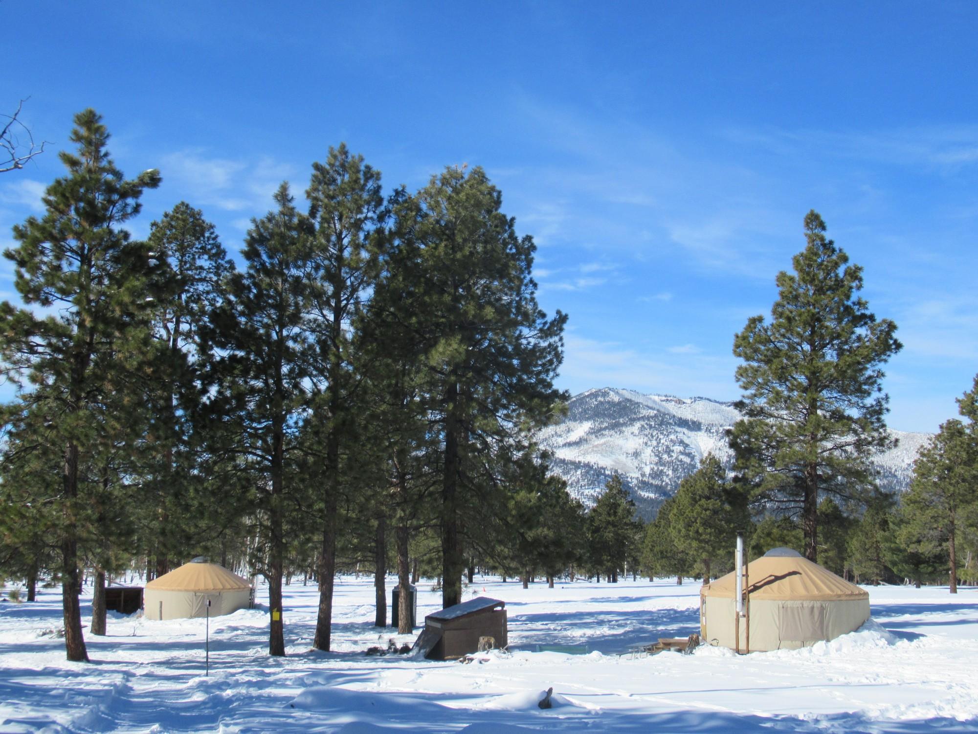 yurts in Flagstaff