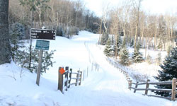 Heading into the snowy woods at Lakewoods Resort.