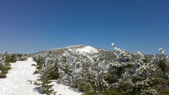 Road to the summit of Mount Moosilauke, New Hampshire