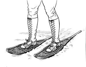 Snowshoes 1