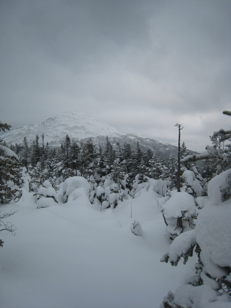 view of Mt Marcy from summit of Mt Gray