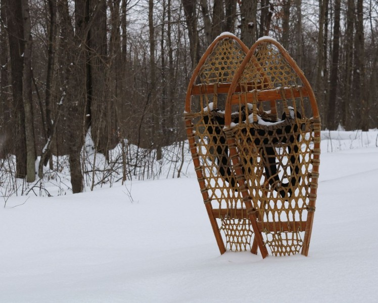 traditional snowshoes standing in snow