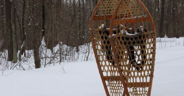 traditional snowshoes standing up in deep snow