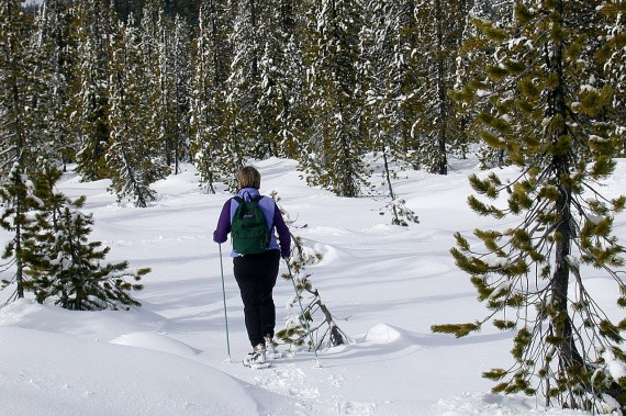 snowshoeing- proper posture to prevent injuries