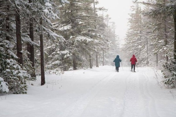 Two visitors enjoy the woods in winter on a Snowshoe Discovery Tour, Canaan Valley National Wildlife Refuge, WV. Credit: Kent Mason