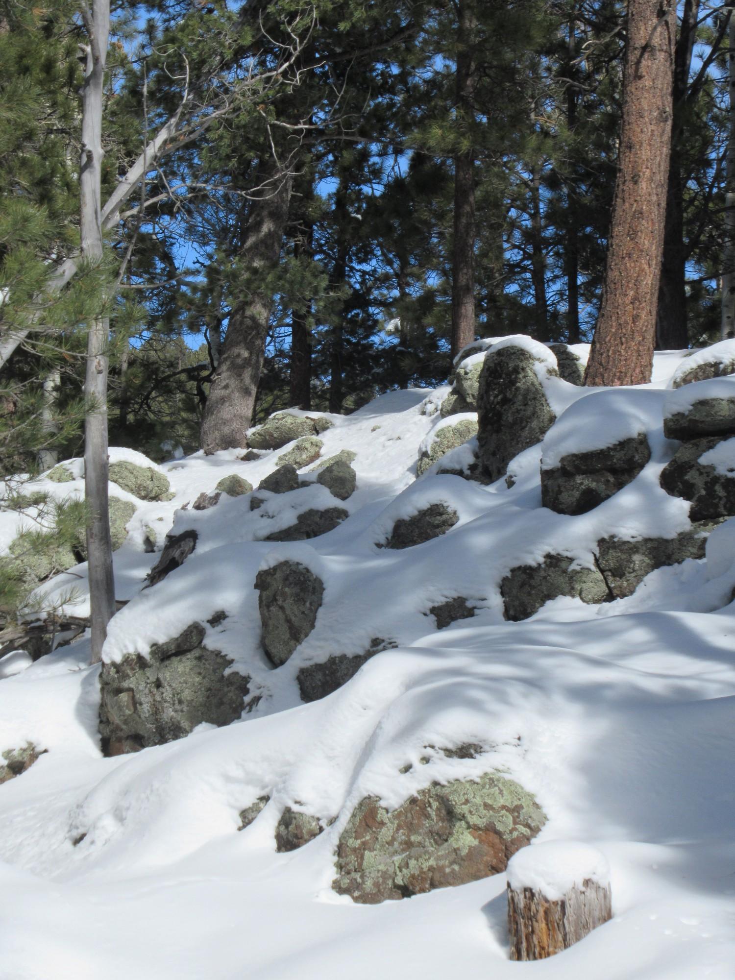 volcanic rocks while snowshoeing at Arizona Nordic Village in Flagstaff