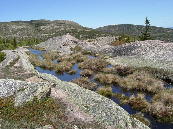 800px-Acadia_National_Park