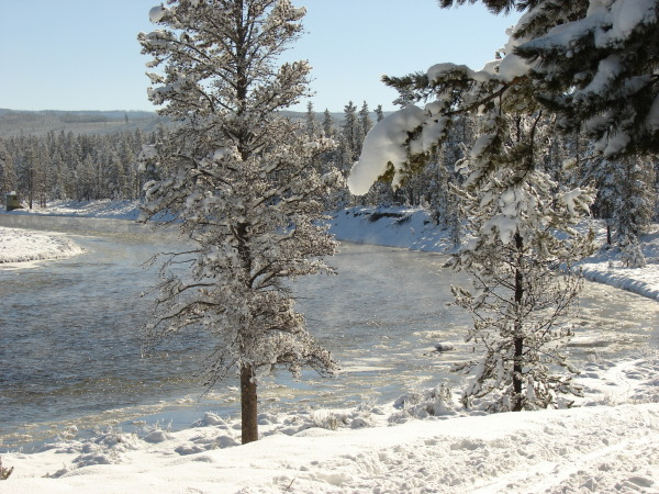 Plan for inspiring views along the Upriver Loop in Yellowstone National Park.