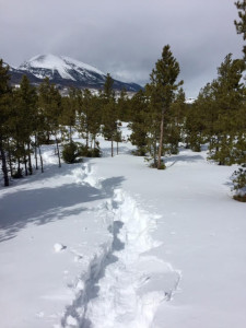 Breaking crusty trail at the Frisco Nordic Center.