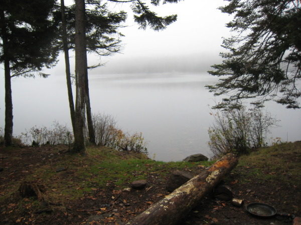 Spruce Lake #3 Shelter