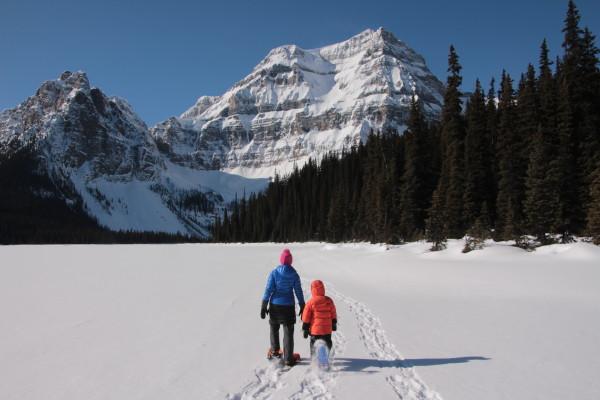Choosing a Snowshoe Trail