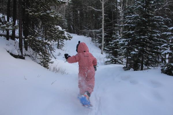 Snowshoeing to Crandell Lake