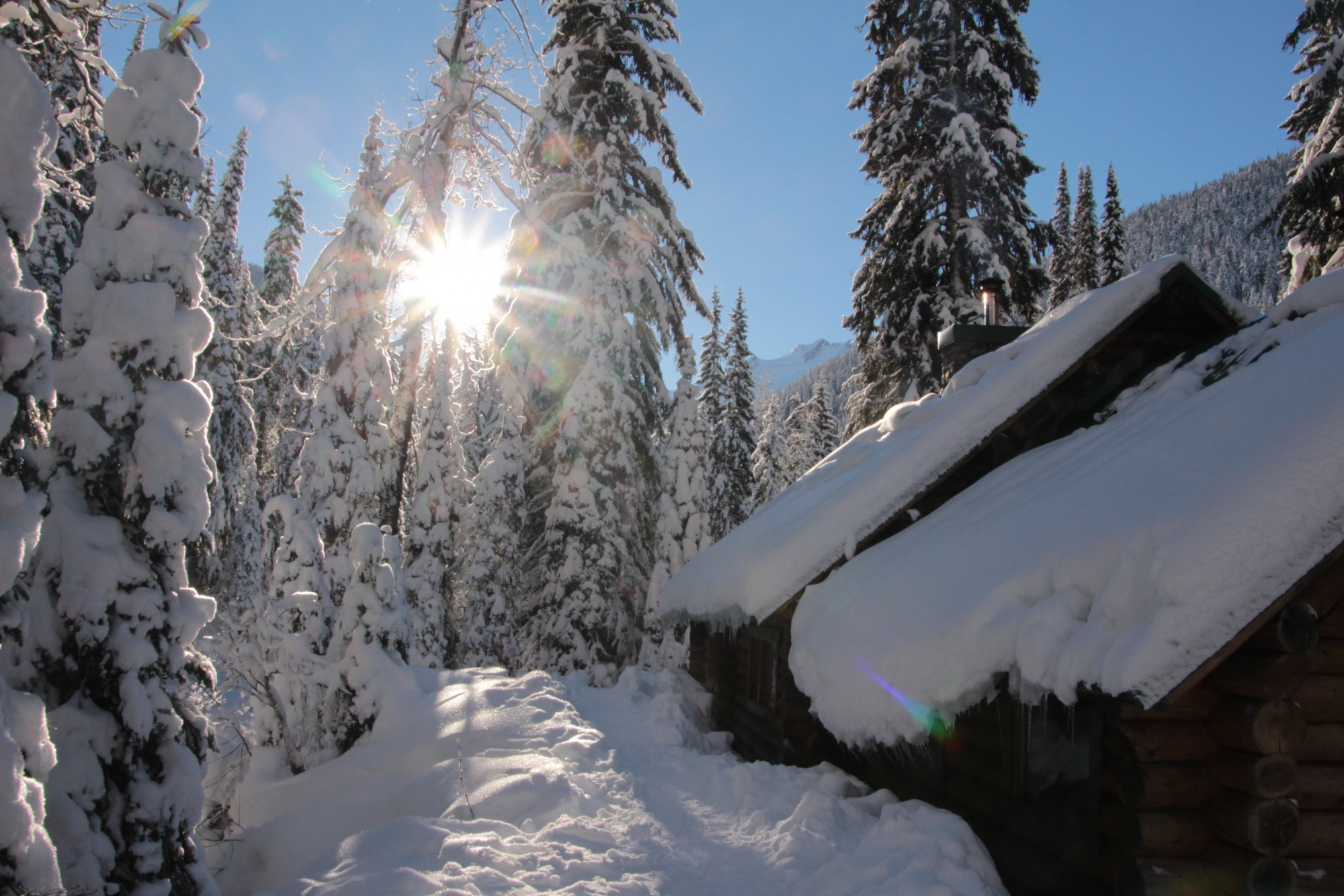 Snowshoeing Rogers Pass In Glacier National Park Canada