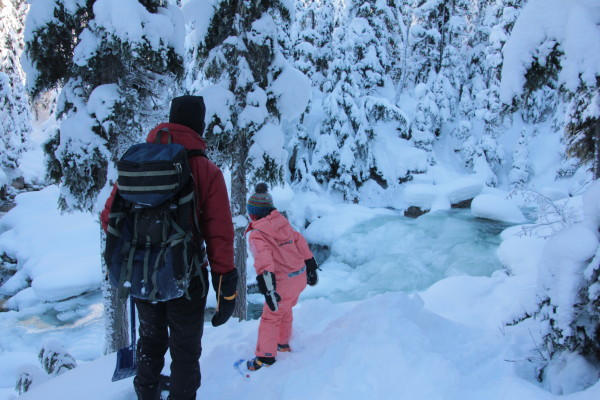 """Exploring the """"Meeting of the Waters"""" Trail at Rogers Pass"""