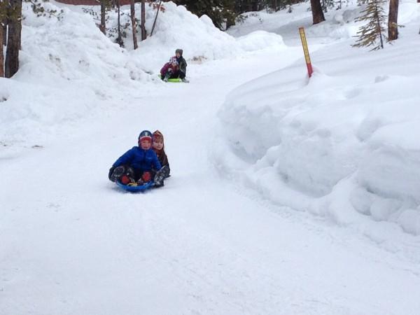 Montana road-sledding.