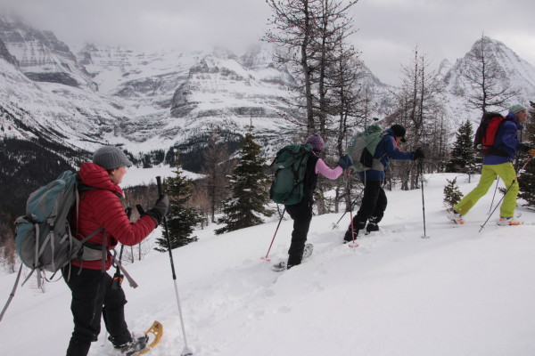 Backcountry Snowshoeing with Guide and Owner of Lake O'Hara Lodge