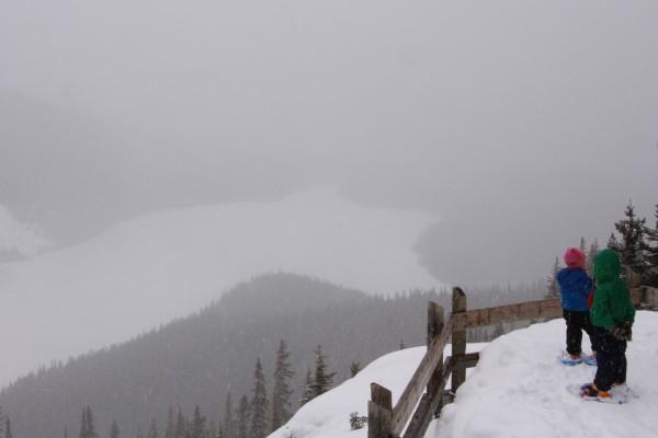 Peyto Lake in Winter