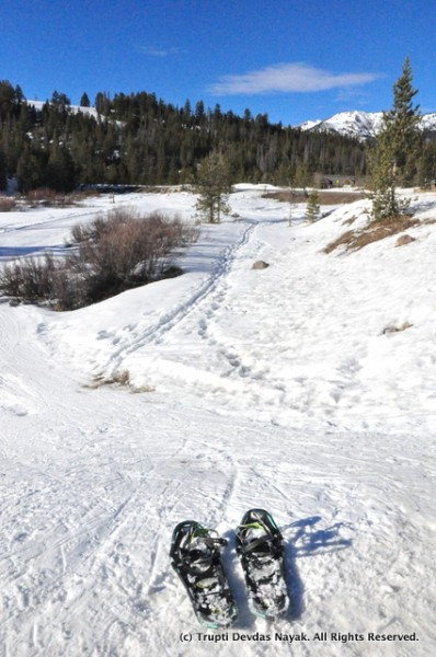 Snowshoeing in Sawtooth National Recreation Area