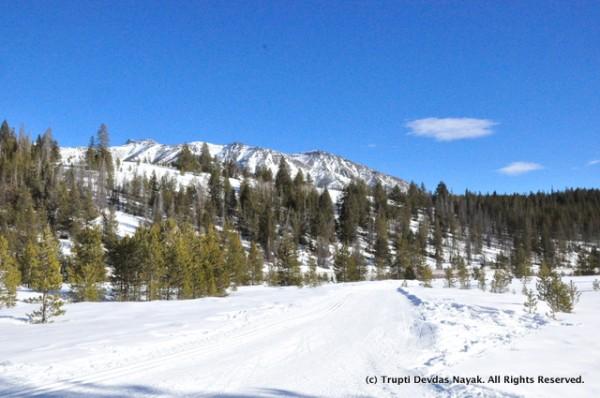 Walking alongside the Nordic ski trail