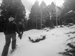 Snowshoeing at Angel Fire