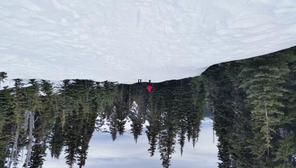 Snowshoeing Hurricane Hill Road
