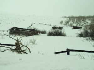 Abandoned homestead on Antelope Flats Road.