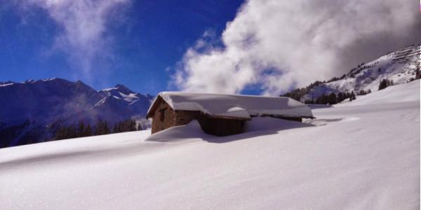 Pristine untracked snow in the upper alpage of Mont de l'Arpille.