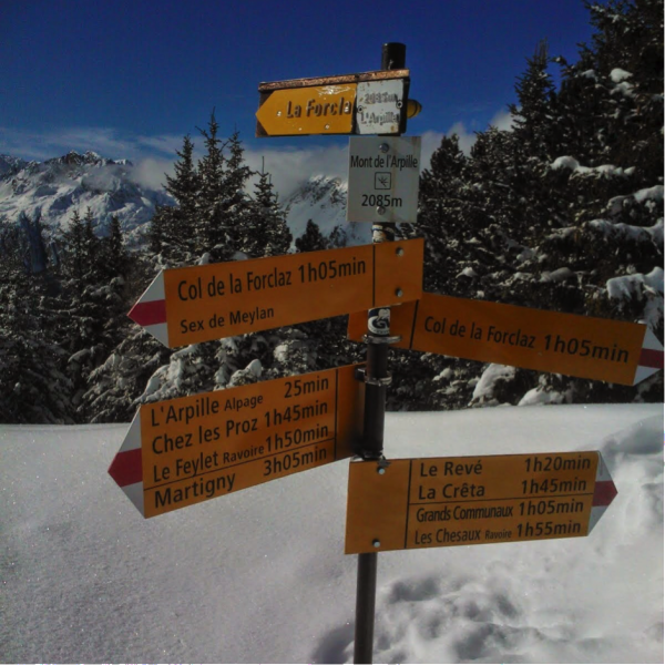 Typical Swiss efficiency, with a signpost on the summit of Mont de l'Arpille.