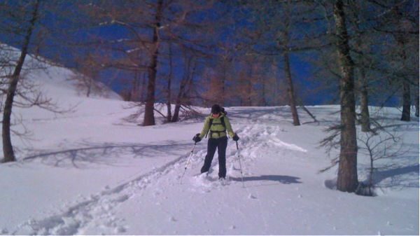 Making fresh tracks into the trees above the Colle San Carlo.